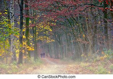 Walking Through The Autumn Fog