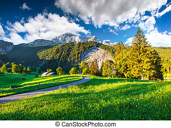 Walking trail around Swiss lake Obersee, located near Nafels village. Alps, Switzerland, Europe.