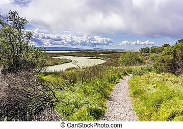 Walking trail in Don Edwards National Wildlife Refuge, San Jose, South San Francisco Bay Area, California