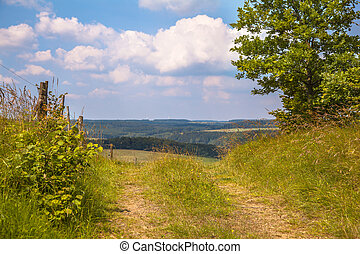 Walking trail on a Hill in a Green Summer Landscape