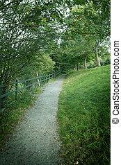 Walking trail - Beautiful walking trail in a park