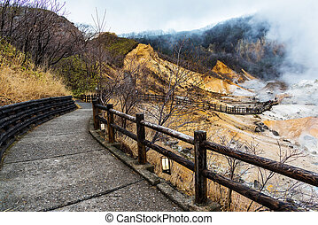 Walking trail to Jigokudani hell valley
