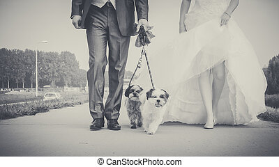 Walking with dog on the morning of the wedding day