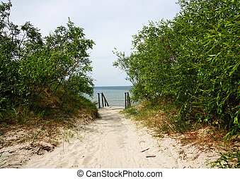 walkway, à, les, mer