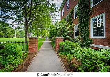 Walkway and Hamilton Hall, at Harvard Business School in Boston, Massachusetts.