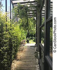Walkway during glass wall and plant panel to the garden at the backyard