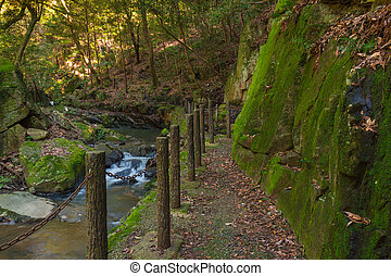 Walkway in forest feeling deserted with a little waterfall