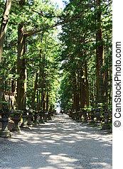 Walkway in Japanese temple