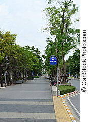 Walkway in the city with green tree