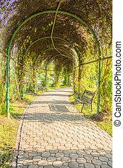 Walkway in the park.