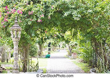 walkway in the shady botanic garden, nature