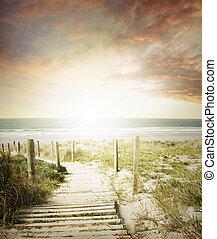 Walkway leading to beach scene