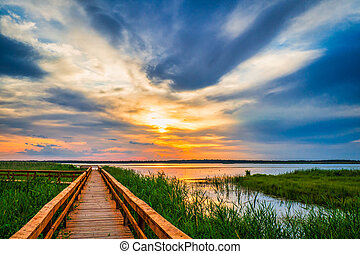Walkway Path in the Lake. Boardwalk, Wooden Bridge for Nature Trail. Beautiful Sunset