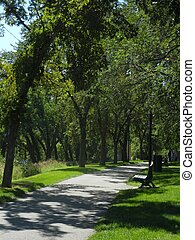 Walkway through forest - Path through trees in park