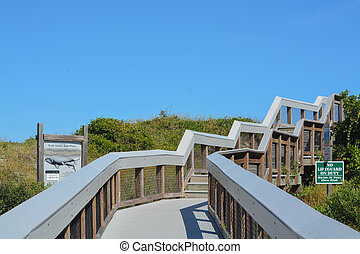 Walkway to the Atlantic Ocean. Lookout point for Right Whales