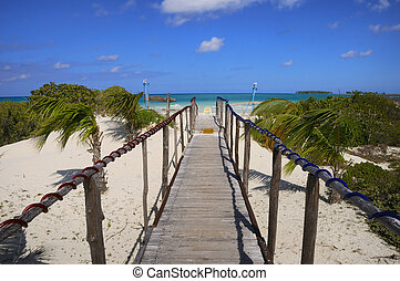 walkway to the beach - Wooden walkway heading to tropical...