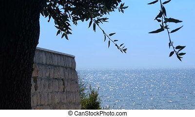 wall and tree, shiny surface of the sea in the background