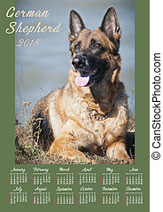 Wall Calendar Poster for 2018 Year with photo dog. Week Starts Sunday