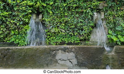 Wall fountain in botanical garden