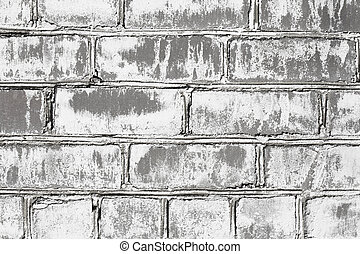 Wall from brick damaged by mould
