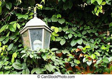 Wall lamp in garden