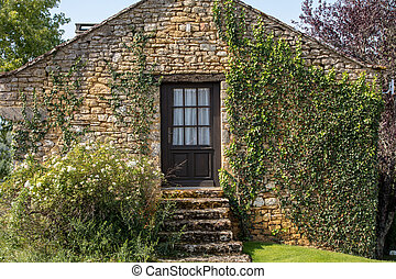wall of a old stone house overgrown with Ivy