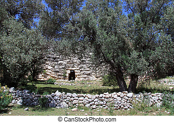 Wall of aquaduct - Wall of Patara aquaduct and olive trees...