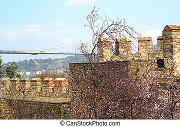 Wall of fortress Rumeli Hisari in Istanbul, Turkey. Cherry blossom in bloom. Fatih Sultan Bridge or Second Bosphorus Bridge. Travel photography.