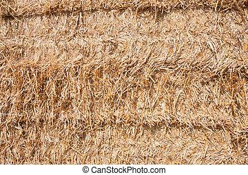 Wall of hay