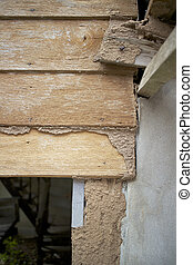 wall of house destroy by termites