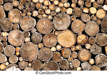 log wood texture