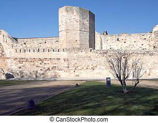 Wall of the castle