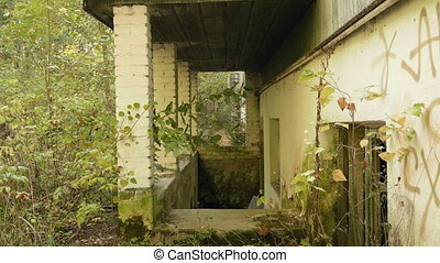 Wall of the deserted factory in the forest. Autumn daytime. Smooth dolly shot