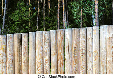 wall of wooden stakes in the woods