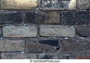 Wall Patterns 3