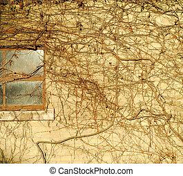 Wall window ivy