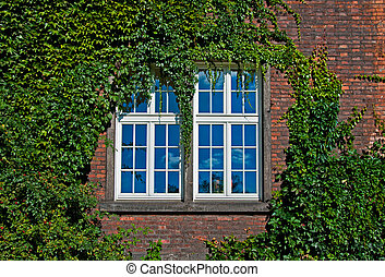 wall with a window