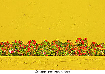 wall with flower