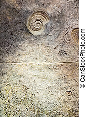 Wall with fossil at garden - Wall with fossil at butterfly...