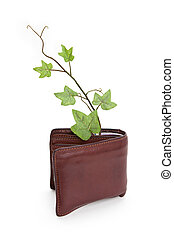 Wallet and plant
