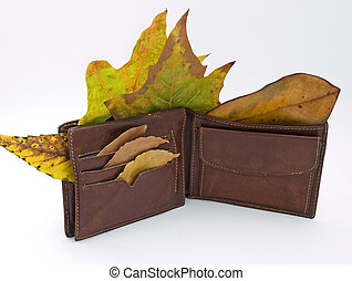 Wallet in the Autumn