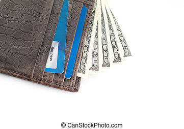 Wallet with a lot of money