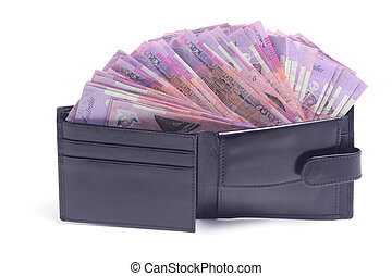 Wallet with Dollar Notes