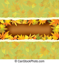 Wallpaper background with autumn leaves
