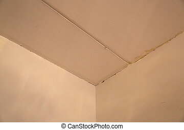 Walls and ceiling need repair - Old walls and ceiling in the...