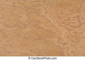 Walnut burl design texture. Natural background closeup. Extremely high resolution photo.