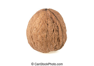 walnut closeup on white background