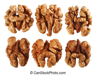 Walnut detail and set on white background