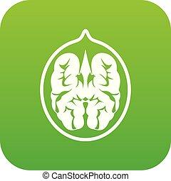 Walnut icon digital green