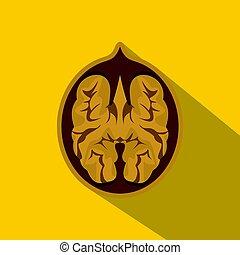 Walnut icon, flat style
